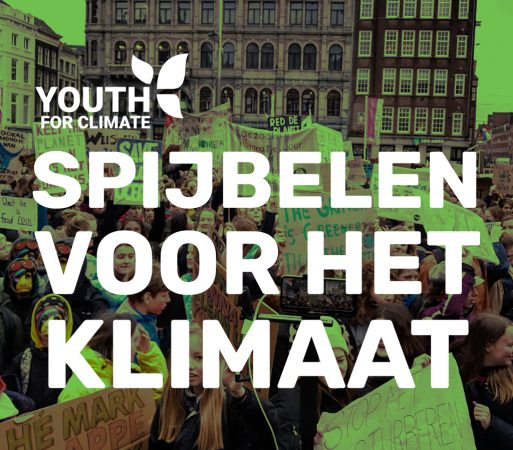Youth For Climate demo Malieveld in Den Haag op 7 februari